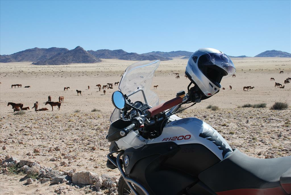 A close up of the front view of a motorbike on a dirt road looking out over a group of horses.