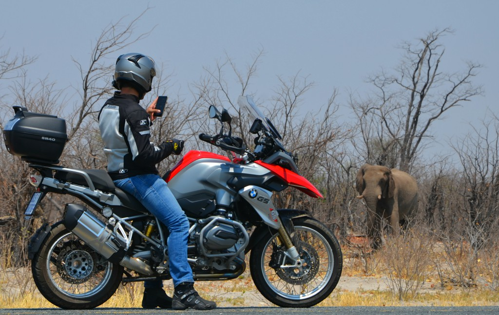 A man on a motorbike taking a photo on his phone of an elephant between the trees.